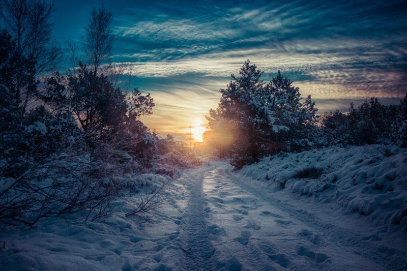 Langa del Sole Natale