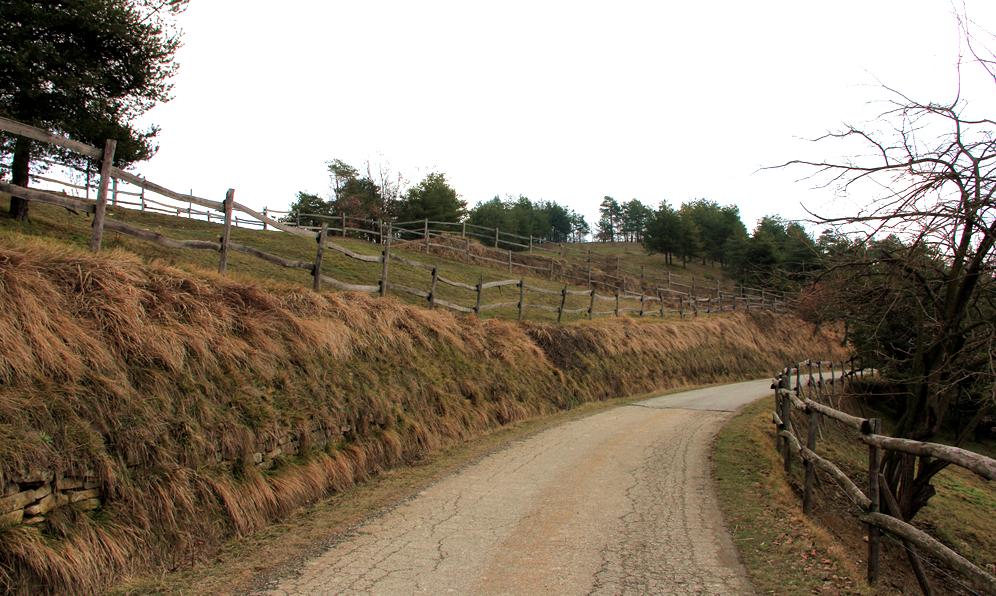 La strada che porta alla chiesetta di San Bovo di Castino